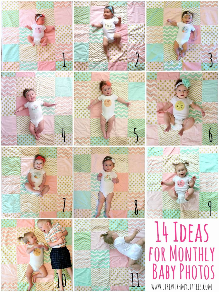 8 Month Birthday Decoration Ideas Luxury Monthly Baby Picture Ideas Life with My Littles