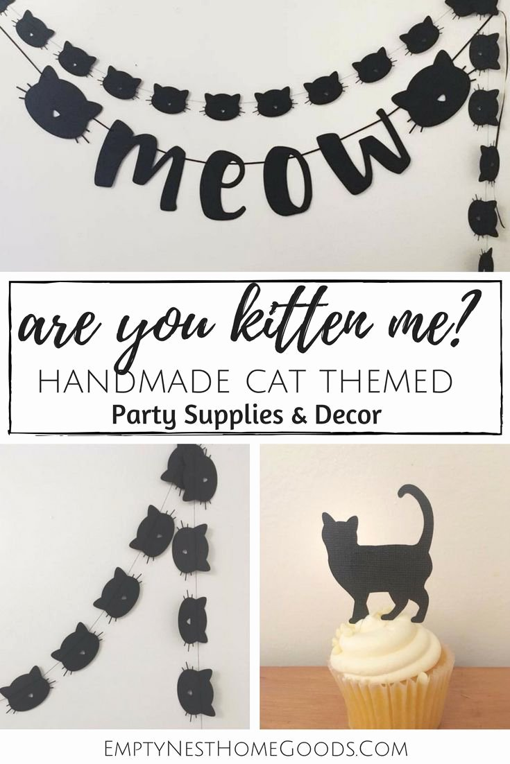 Cat Birthday Decoration Ideas Beautiful Cat Banner Meow Party Banner are You Kitten Me Party